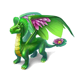 An image of the Water Lily Dragon