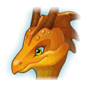 A Headshot of Butterfly Dragon